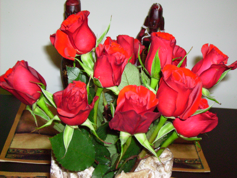 Drying flowers dainty darlings blog dried roses izmirmasajfo